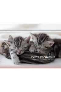 L'AGENDA-CALENDRIER CHATS & CHATONS 2017